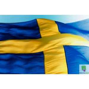Swedish VPN Yearly
